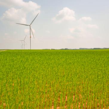 Nachhaltigkeit muss Markenzeichen der EU werden