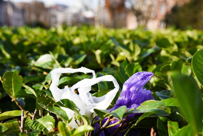 """""""Weniger Plastik in Supermarktregalen und in den Meeren"""" EU beschließt Maßnahmen gegen Einwegkunststoff"""