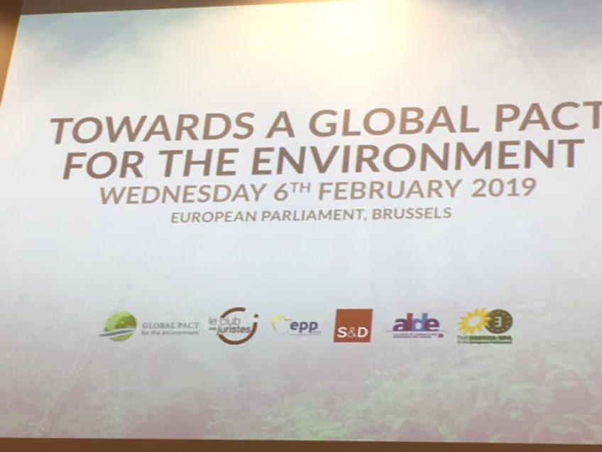 Globaler Pakt für die Umwelt
