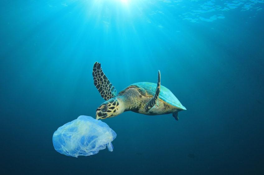 """""""Kampf der EU gegen Wegwerfplastik beginnt"""""""